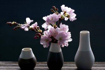 花瓶に挿した桜の花