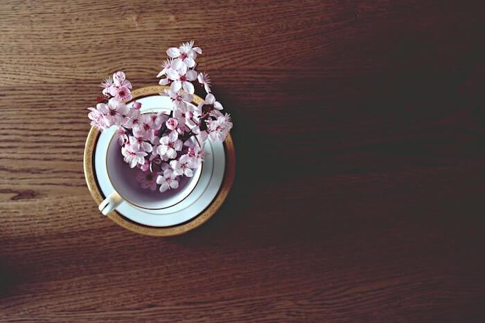 カップに1輪挿の桜
