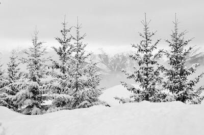 深い雪にうもれた風景