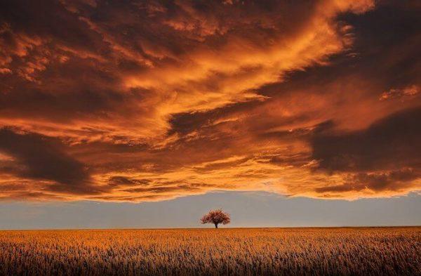 夕焼けの雲と大地