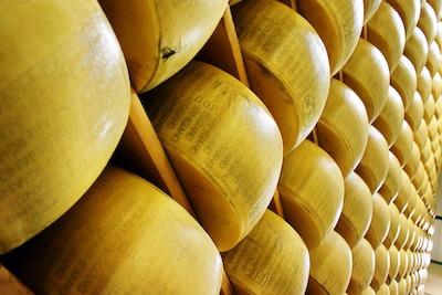 熟成中のパルメザンチーズ