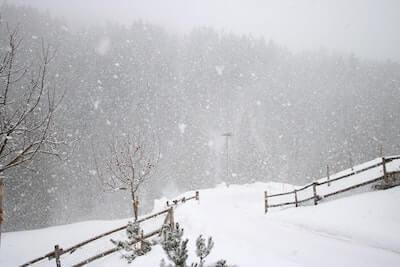 雪が吹雪いている