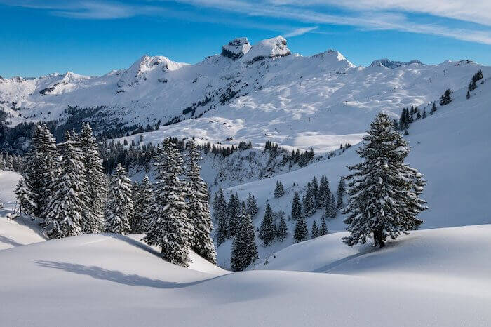 雪に覆われた山