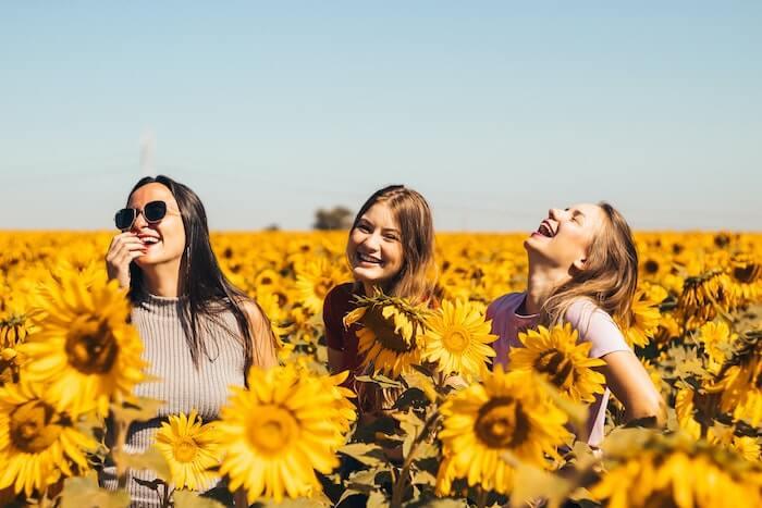 ひまわりの畑の3人の女性の友達
