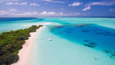 綺麗な海と白い砂浜