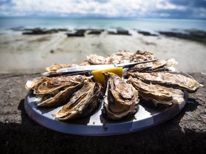 海辺に並べられた牡蠣
