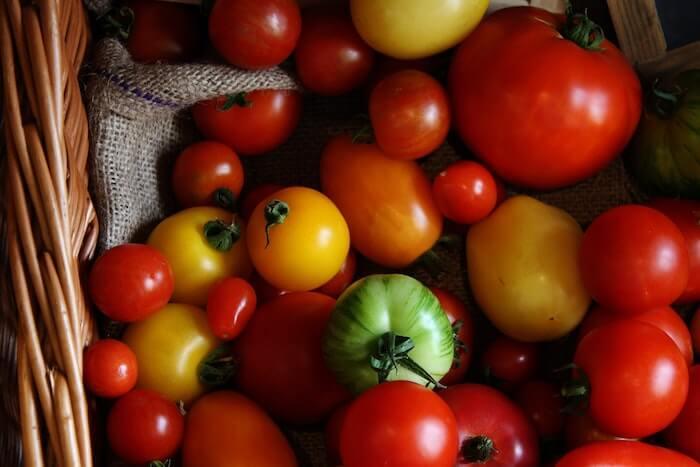 さまざまな種類のトマト