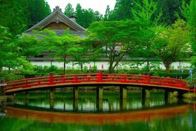 池の水面に映る赤い橋と新緑の風景