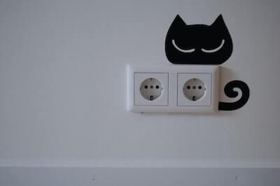 猫の電気プラグ